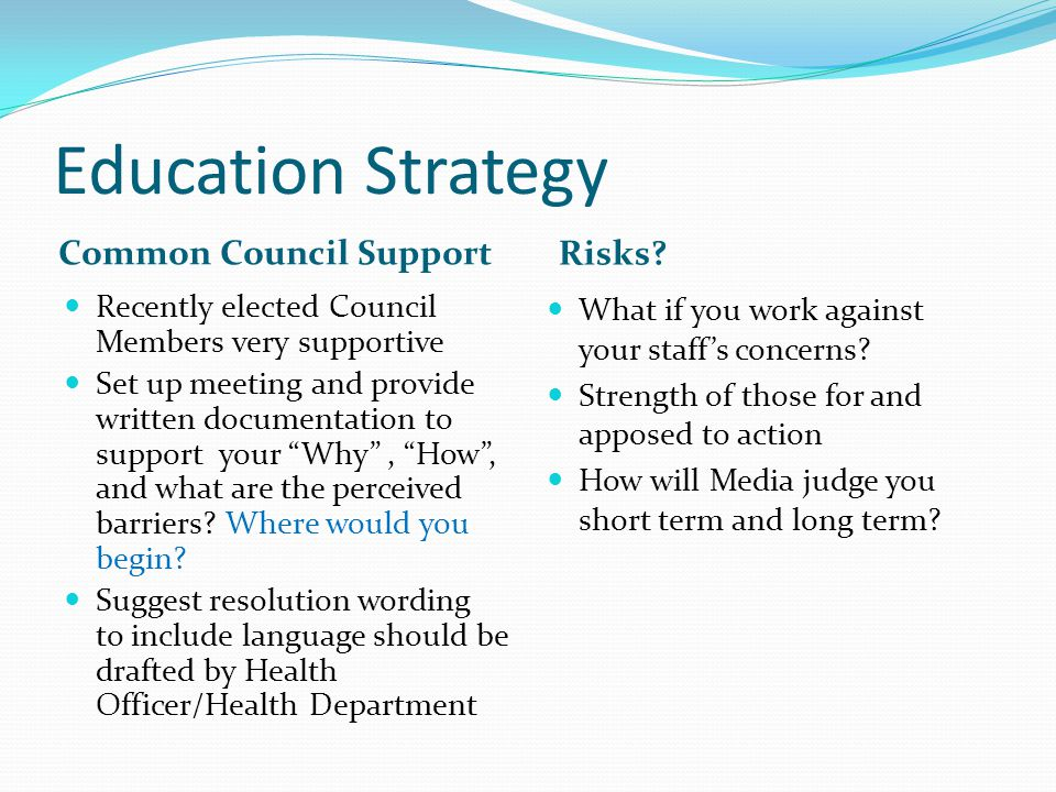 Education Strategy Common Council Support Risks.