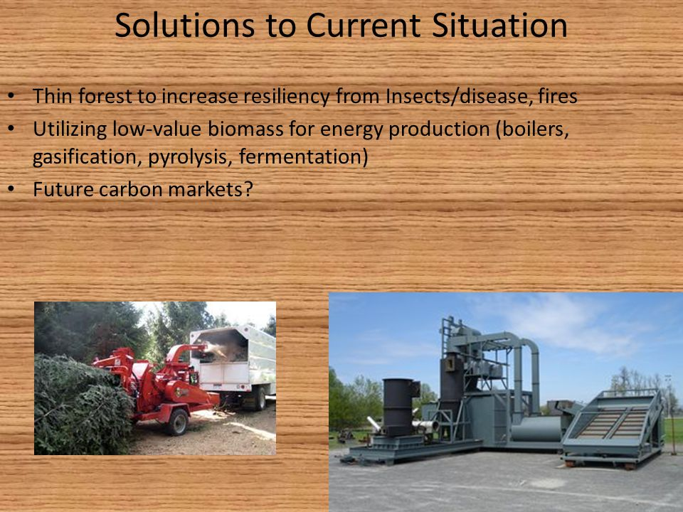 Solutions to Current Situation Thin forest to increase resiliency from Insects/disease, fires Utilizing low-value biomass for energy production (boilers, gasification, pyrolysis, fermentation) Future carbon markets?