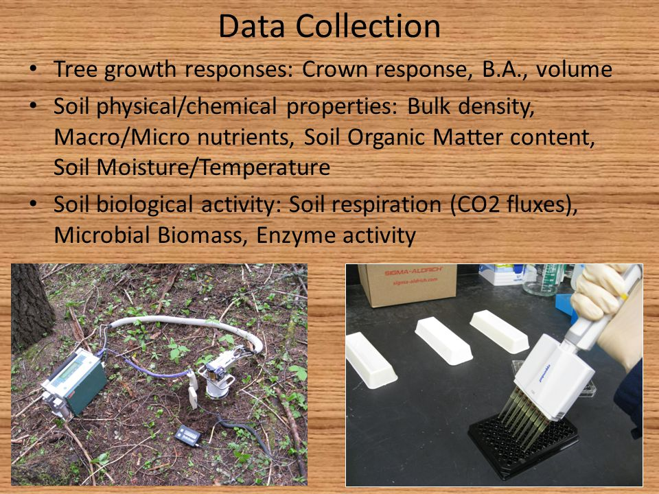 Data Collection Tree growth responses: Crown response, B.A., volume Soil physical/chemical properties: Bulk density, Macro/Micro nutrients, Soil Organic Matter content, Soil Moisture/Temperature Soil biological activity: Soil respiration (CO2 fluxes), Microbial Biomass, Enzyme activity