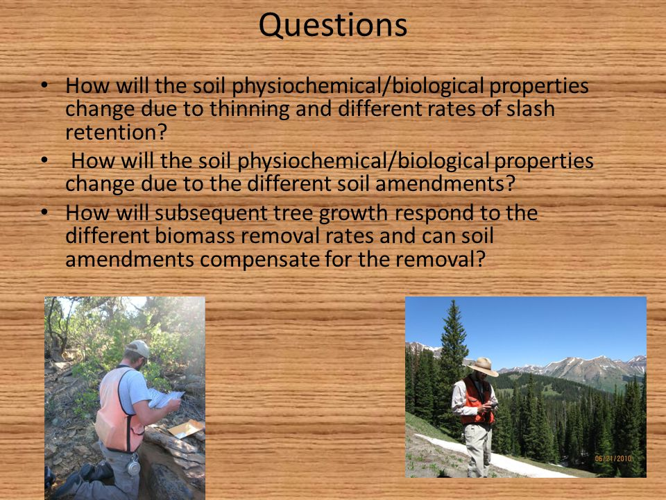 Questions How will the soil physiochemical/biological properties change due to thinning and different rates of slash retention? How will the soil phys