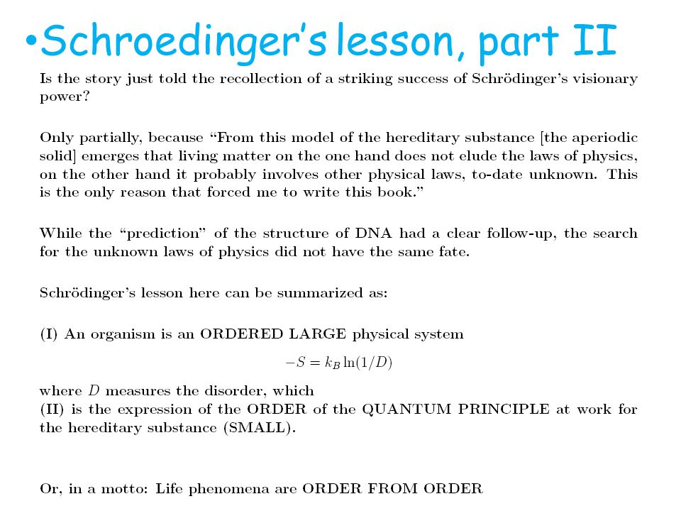 Schroedingers lesson, part II