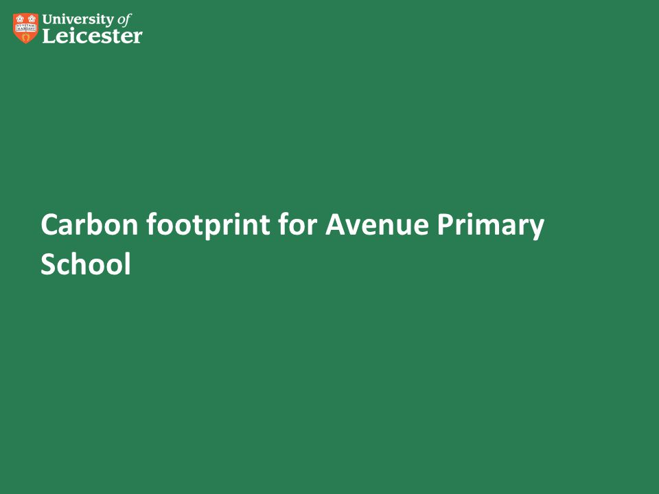 Carbon footprint for Avenue Primary School