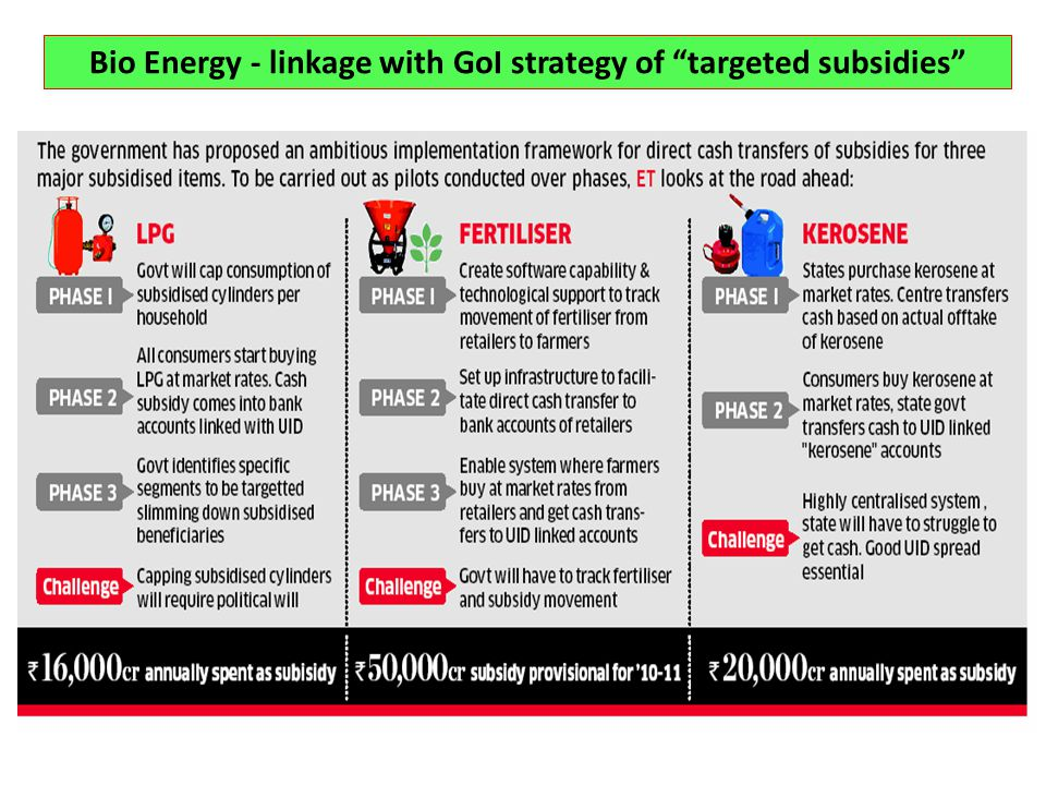Bio Energy - linkage with GoI strategy of targeted subsidies