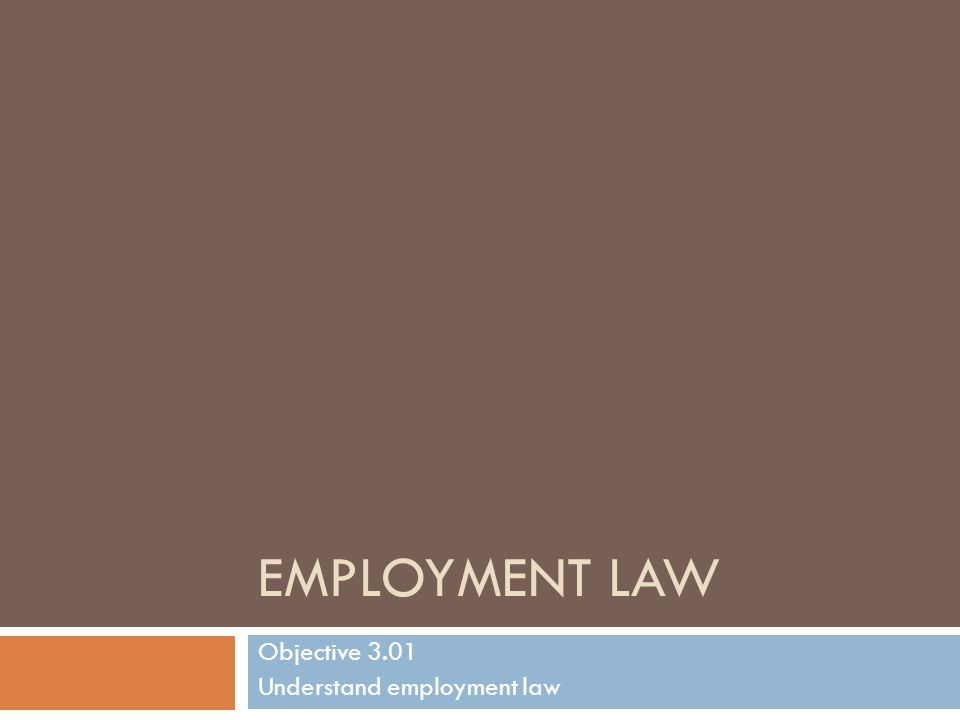 Employment Law Basics Employment law Division of law that governs the relationship between employers and employees Employment law stems from various forms of law including tort, criminal, contract, and labor law