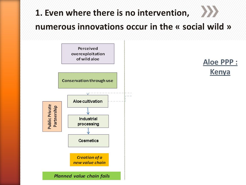 1. Even where there is no intervention, numerous innovations occur in the « social wild » Aloe PPP : Kenya