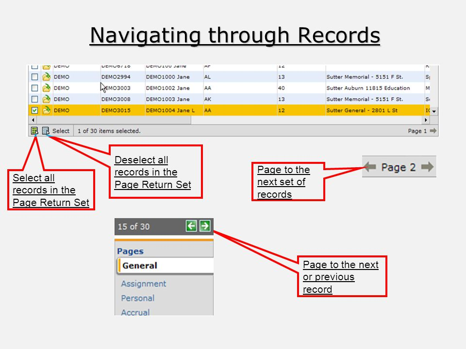 Navigating through Records Select all records in the Page Return Set Deselect all records in the Page Return Set Page to the next or previous record Page to the next set of records