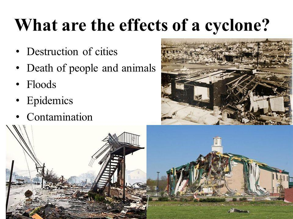 What are the effects of a cyclone? Destruction of cities Death of people and animals Floods Epidemics Contamination