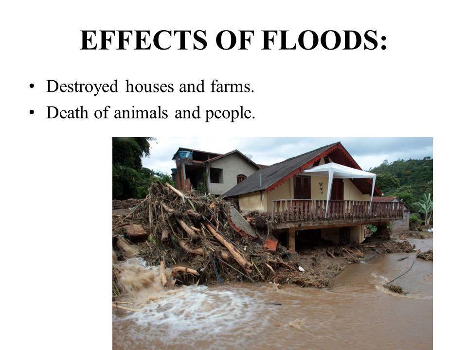EFFECTS OF FLOODS: Destroyed houses and farms. Death of animals and people.