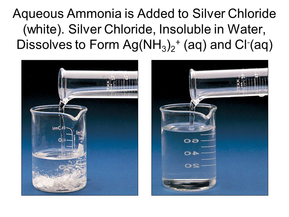Aqueous Ammonia is Added to Silver Chloride (white). Silver Chloride, Insoluble in Water, Dissolves to Form Ag(NH 3 ) 2 + (aq) and Cl - (aq)