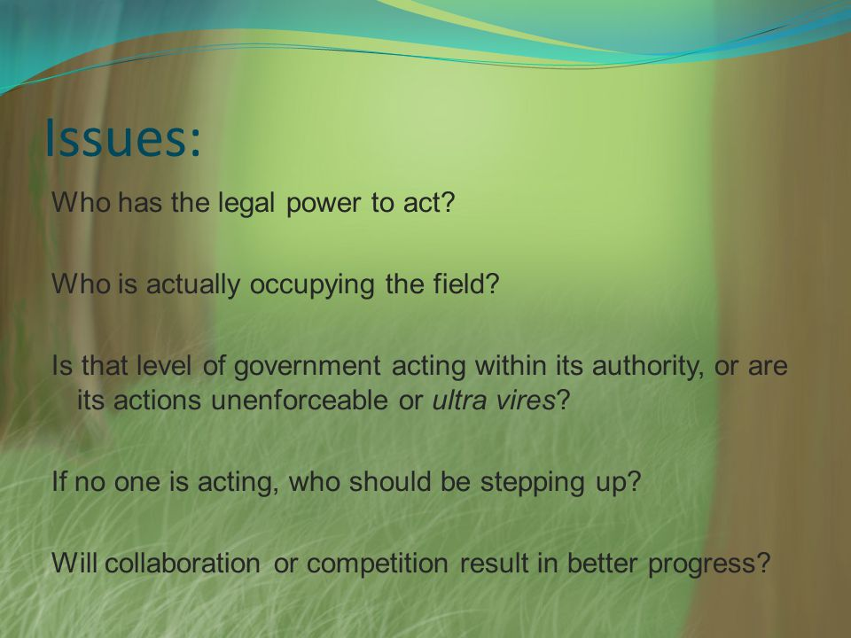 Issues: Who has the legal power to act? Who is actually occupying the field? Is that level of government acting within its authority, or are its actio