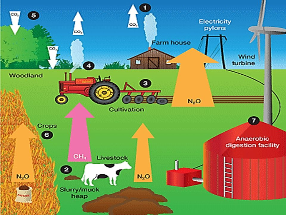Mitigation Help reduce emissions & the impact of climate change by: Generating renewable energy Improving on farm efficiency ---------------------------------------------------------------- Adaptation Make your business more resilient to climate change by: Protecting soils and other key assets Improving water efficiency Considering new crops and increased levels of farm diversification