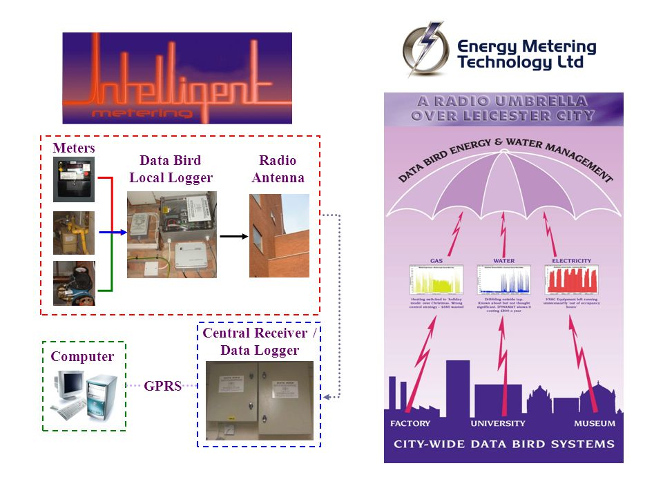 Radio Antenna Meters Data Bird Local Logger Central Receiver / Data Logger GPRS Computer
