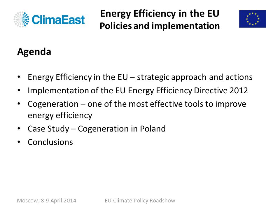 Energy Efficiency in the EU Policies and implementation Energy Efficiency in the EU – strategic approach and actions Implementation of the EU Energy E