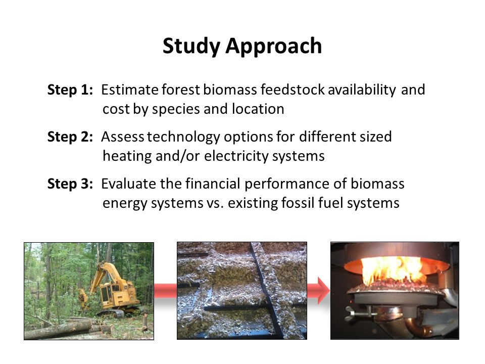 Step 1: Estimate forest biomass feedstock availability and cost by species and location Step 2: Assess technology options for different sized heating and/or electricity systems Step 3: Evaluate the financial performance of biomass energy systems vs.