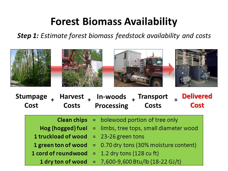 Step 1: Estimate forest biomass feedstock availability and costs Forest Biomass Availability Clean chips=bolewood portion of tree only Hog (hogged) fuel=limbs, tree tops, small diameter wood 1 truckload of wood=23-26 green tons 1 green ton of wood=0.70 dry tons (30% moisture content) 1 cord of roundwood=1.2 dry tons (128 cu ft) 1 dry ton of wood=7,600-9,600 Btu/lb (18-22 GJ/t) Delivered Cost Harvest Costs In-woods Processing Transport Costs ++= Stumpage Cost +