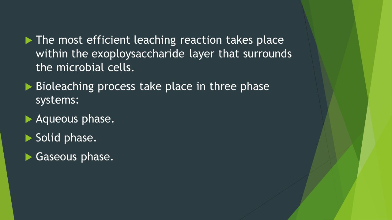 The most efficient leaching reaction takes place within the exoploysaccharide layer that surrounds the microbial cells. Bioleaching process take place