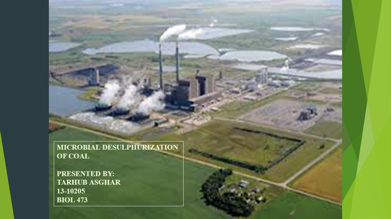 MICROBIAL DESULPHURIZATION OF COAL PRESENTED BY: TARHUB ASGHAR 13-10205 BIOL 473