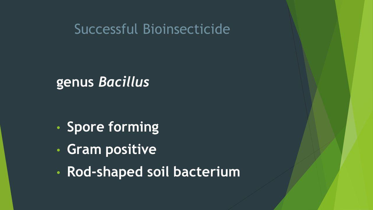 Successful Bioinsecticide genus Bacillus Spore forming Gram positive Rod-shaped soil bacterium