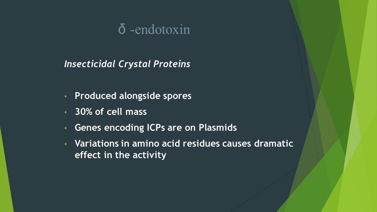 δ -endotoxin Insecticidal Crystal Proteins Produced alongside spores 30% of cell mass Genes encoding ICPs are on Plasmids Variations in amino acid res