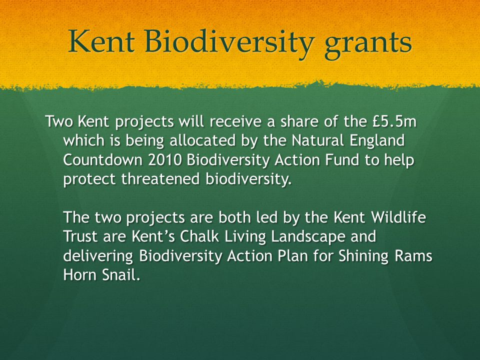 Kent Biodiversity grants Two Kent projects will receive a share of the £5.5m which is being allocated by the Natural England Countdown 2010 Biodiversity Action Fund to help protect threatened biodiversity.