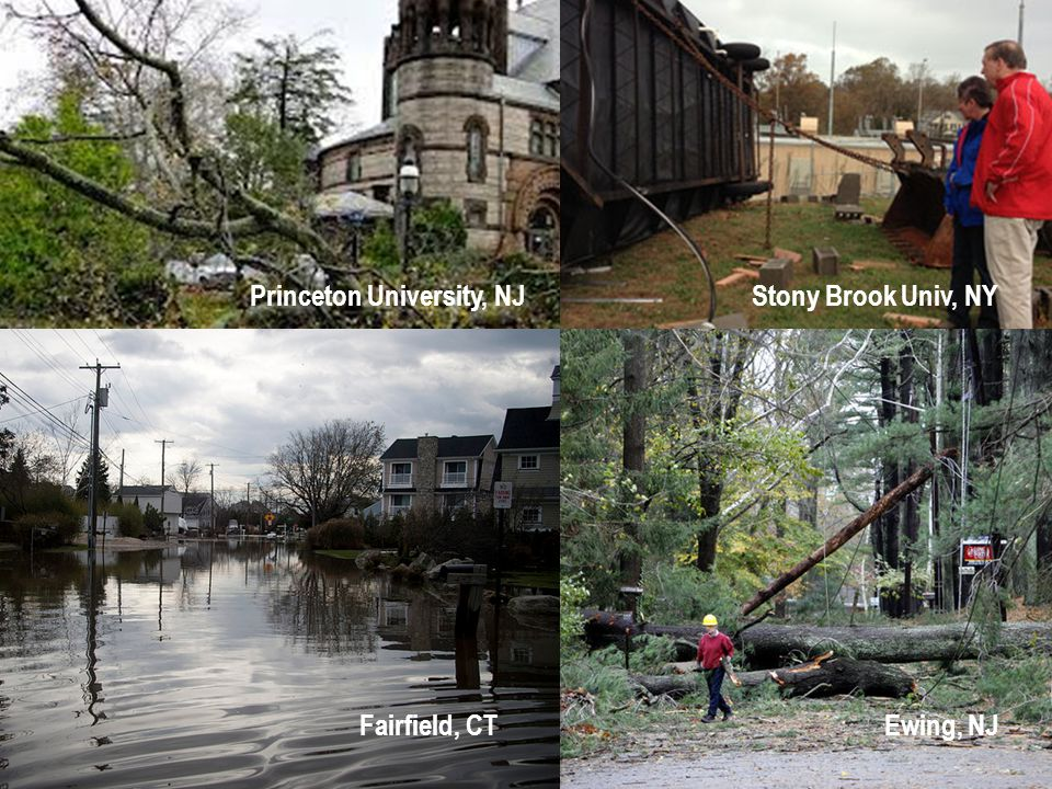 Princeton University, NJStony Brook Univ, NY Fairfield, CTEwing, NJ