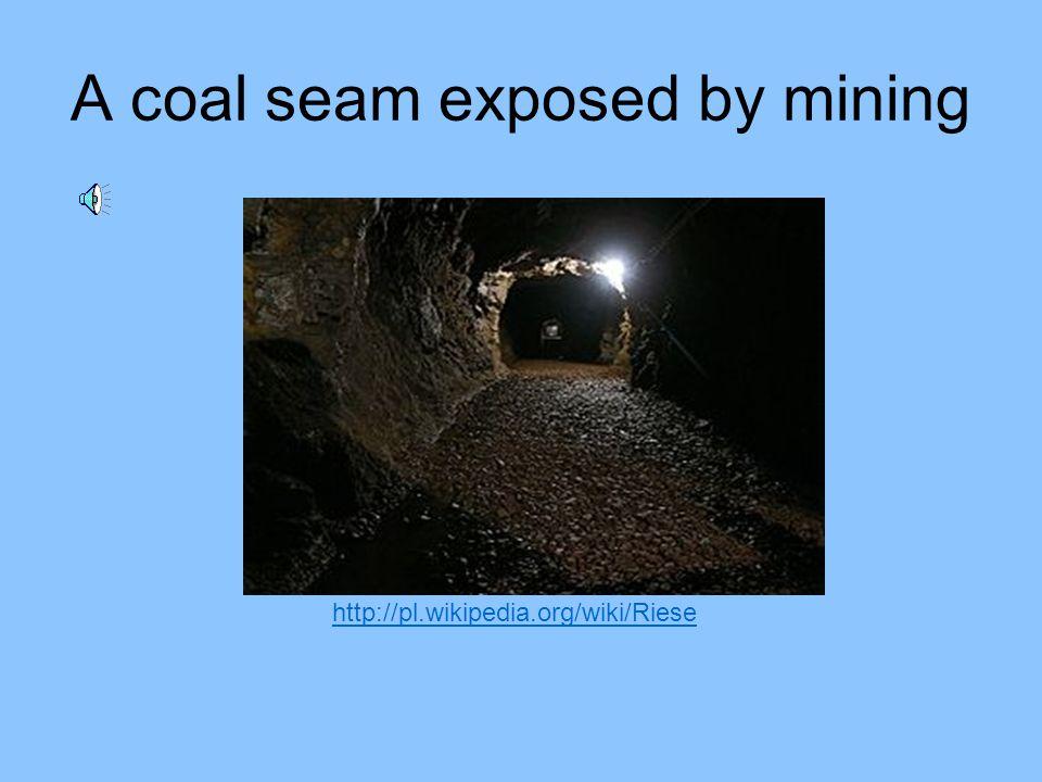 Coal mining has always been a dirty, dangerous job. http://hewit.unco.edu/dohist/mining/work/coal/photo1.htm