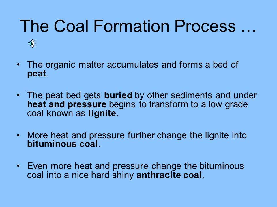 More Environmental Impacts of Using Coal … Burning coal creates ground level ozone, smog and acid rain.
