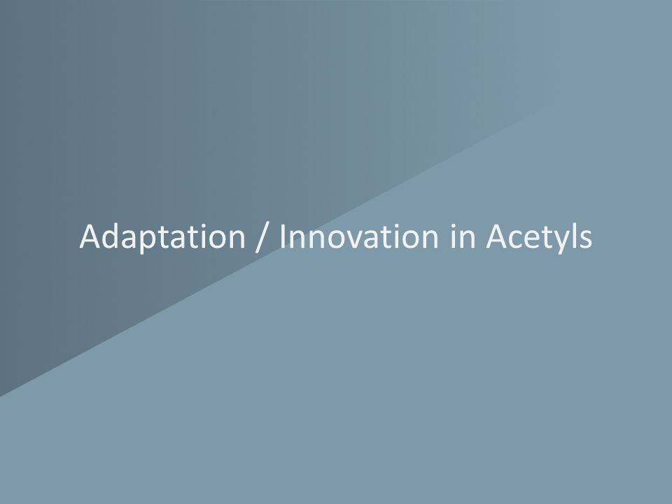 Adaptation / Innovation in Acetyls