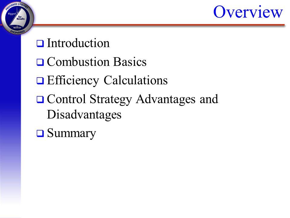 Overview q Introduction q Combustion Basics q Efficiency Calculations q Control Strategy Advantages and Disadvantages q Summary