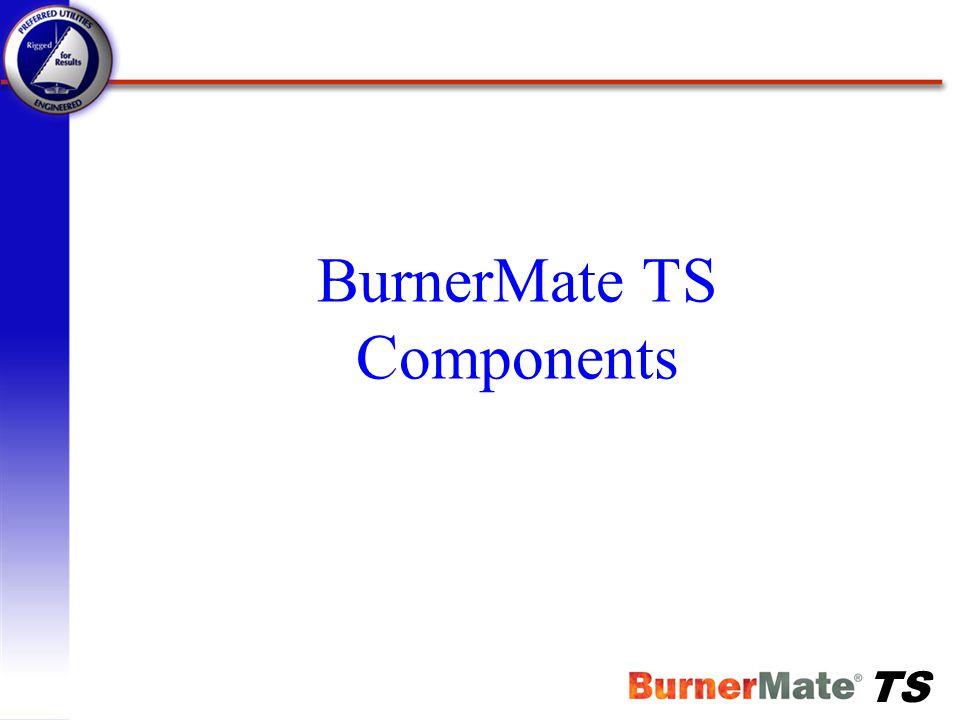 TS Summary BurnerMate TS has….
