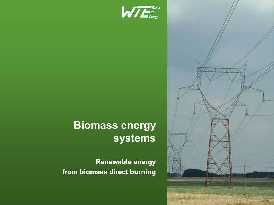 Agenda Biomass materials as a source of renewable energy Biomass energy advantages Financing/Funding of renewable energy systems Plant configuration examples Technology Summary WTE for customers entering the renewable energy business