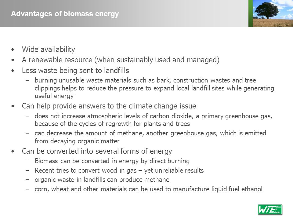 Advantages of biomass energy Wide availability A renewable resource (when sustainably used and managed) Less waste being sent to landfills –burning un