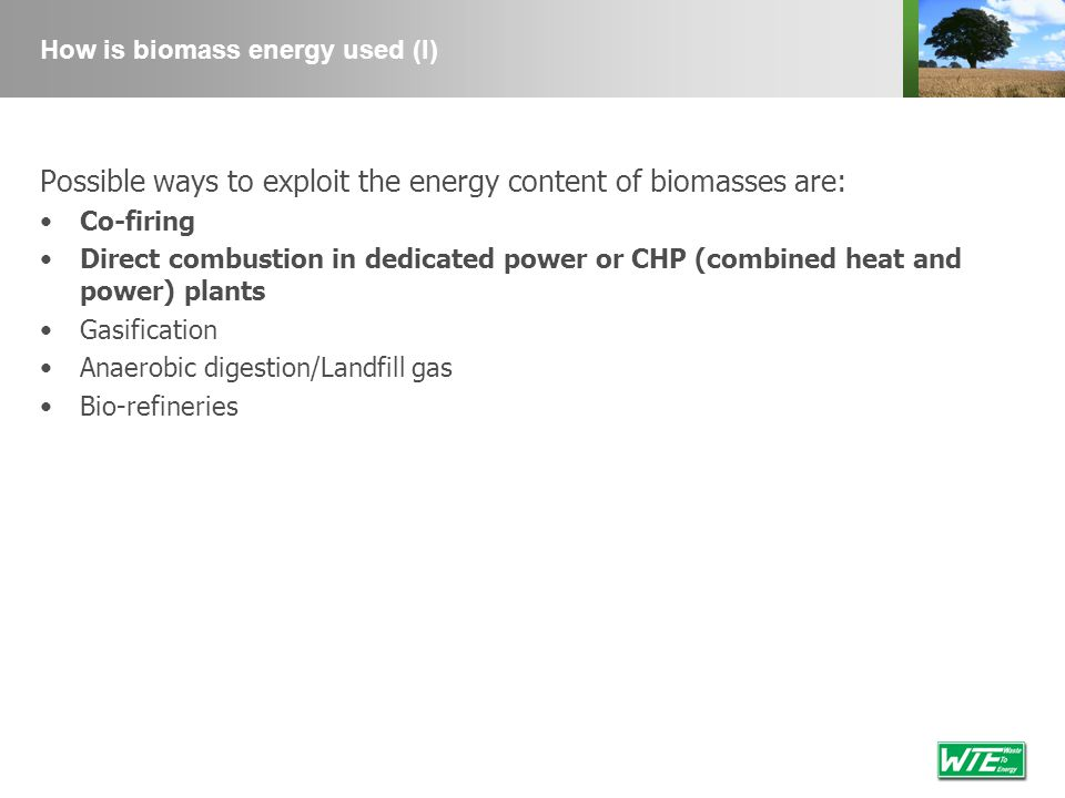 How is biomass energy used (I) Possible ways to exploit the energy content of biomasses are: Co-firing Direct combustion in dedicated power or CHP (co
