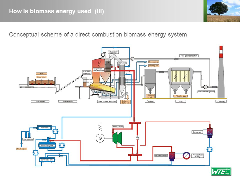 Technology summary (III) Environment & Organization Environmental strengthsUse of biomass more efficient with CHP or water desalinizer Multiple fuel capability Environmental issuesParticulate emissions, thermal pollution, ash disposal Total direct jobs20 (up to 10 MW e ) 40 (from 10 to 30 MWe) 1xMWe (starting from 30 MW e ) Labour: high/managerial skill level20% Labour: moderate skill level65% Labour: low skill level15% Environmental and organizational parameters