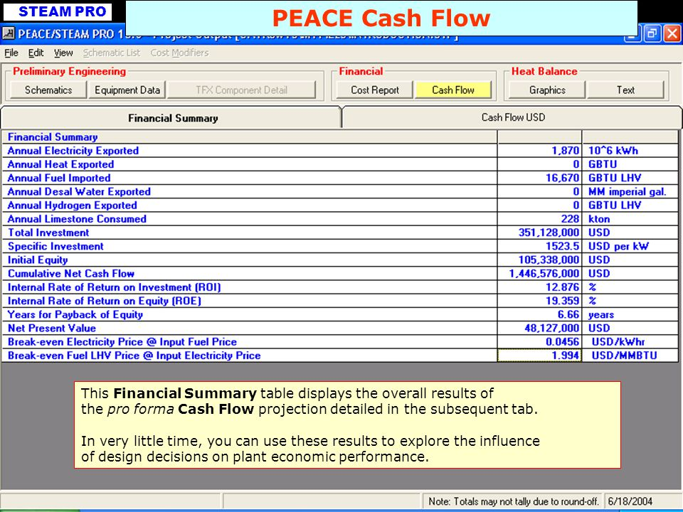 STEAM PRO PEACE Cash Flow This Financial Summary table displays the overall results of the pro forma Cash Flow projection detailed in the subsequent t