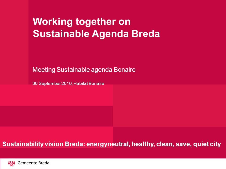 Process sustainable Breda Interactive policy with local actors Sustainability platform and Energy council Frontrunner-pilot projects Spread the word to colleagues Breda-standard higher ambition