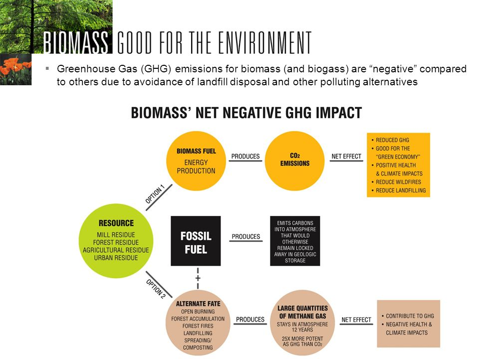 Greenhouse Gas (GHG) emissions for biomass (and biogass) are negative compared to others due to avoidance of landfill disposal and other polluting alternatives