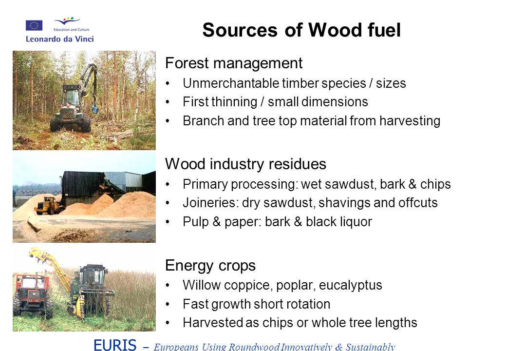 Forest management Unmerchantable timber species / sizes First thinning / small dimensions Branch and tree top material from harvesting Wood industry residues Primary processing: wet sawdust, bark & chips Joineries: dry sawdust, shavings and offcuts Pulp & paper: bark & black liquor Energy crops Willow coppice, poplar, eucalyptus Fast growth short rotation Harvested as chips or whole tree lengths EURIS – Europeans Using Roundwood Innovatively & Sustainably Sources of Wood fuel