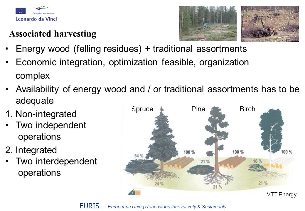 Energy wood (felling residues) + traditional assortments Economic integration, optimization feasible, organization complex Availability of energy wood and / or traditional assortments has to be adequate 1.