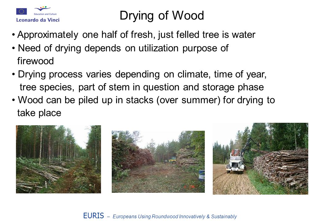Approximately one half of fresh, just felled tree is water Need of drying depends on utilization purpose of firewood Drying process varies depending on climate, time of year, tree species, part of stem in question and storage phase Wood can be piled up in stacks (over summer) for drying to take place EURIS – Europeans Using Roundwood Innovatively & Sustainably Drying of Wood