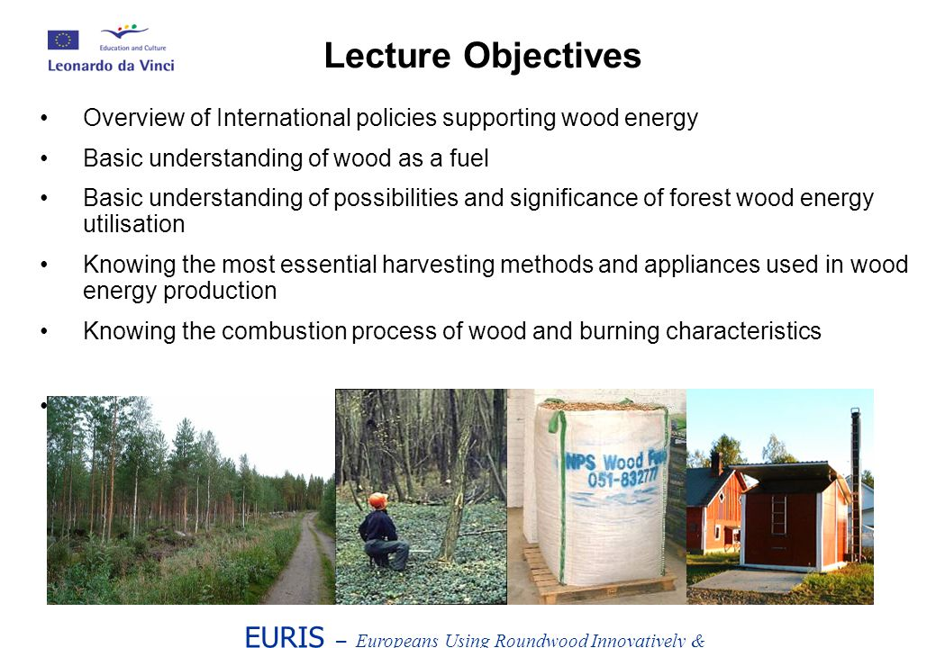 Overview of International policies supporting wood energy Basic understanding of wood as a fuel Basic understanding of possibilities and significance of forest wood energy utilisation Knowing the most essential harvesting methods and appliances used in wood energy production Knowing the combustion process of wood and burning characteristics Knowing the basic solutions of heating systems EURIS – Europeans Using Roundwood Innovatively & Sustainably Lecture Objectives