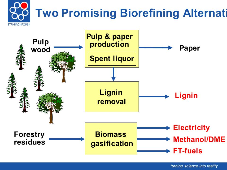 turning science into reality Pulp wood Pulp & paper production Paper Forestry residues Electricity Two Promising Biorefining Alternatives Spent liquor