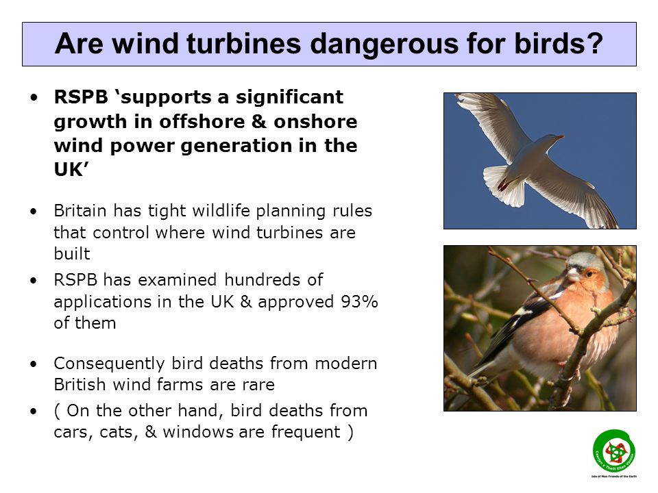 RSPB supports a significant growth in offshore & onshore wind power generation in the UK Britain has tight wildlife planning rules that control where