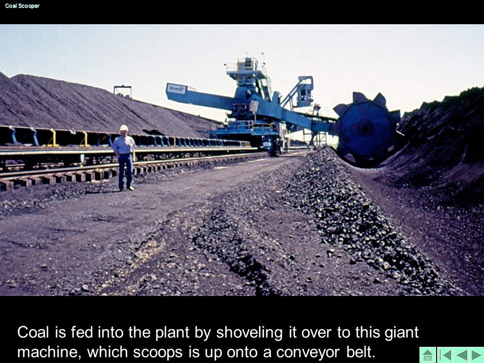 Coal is fed into the plant by shoveling it over to this giant machine, which scoops is up onto a conveyor belt.