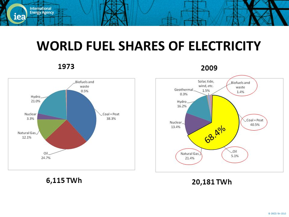 © OECD/IEA 2010 WORLD FUEL SHARES OF ELECTRICITY 1973 6,115 TWh 2009 20,181 TWh 68.4%