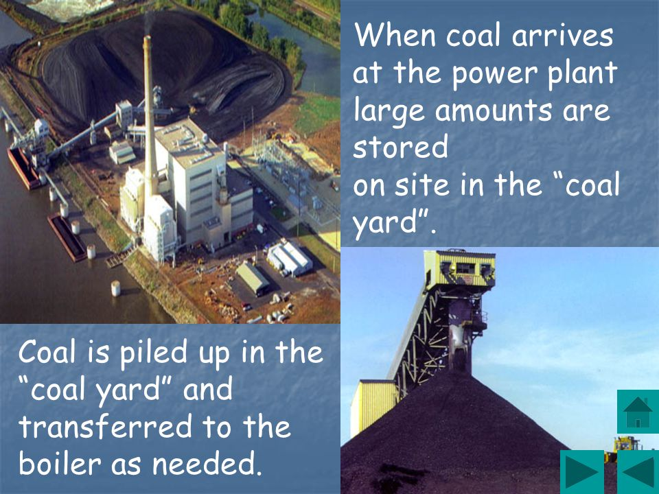 Lignite - This coal has a brownish-black color, a high moisture content and is the lowest rank of coal.