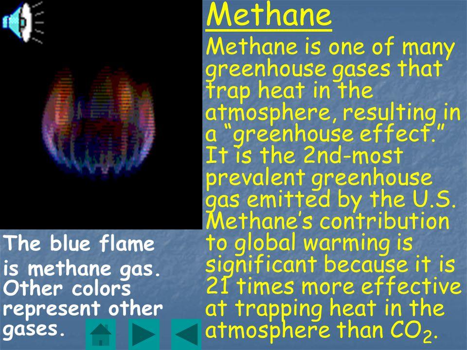 Mercury/Mercury Compounds