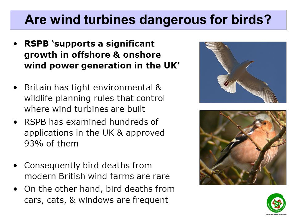 RSPB supports a significant growth in offshore & onshore wind power generation in the UK Britain has tight environmental & wildlife planning rules tha