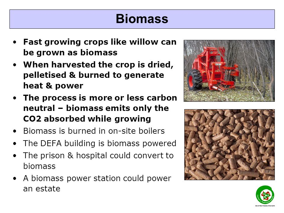 Fast growing crops like willow can be grown as biomass When harvested the crop is dried, pelletised & burned to generate heat & power The process is m