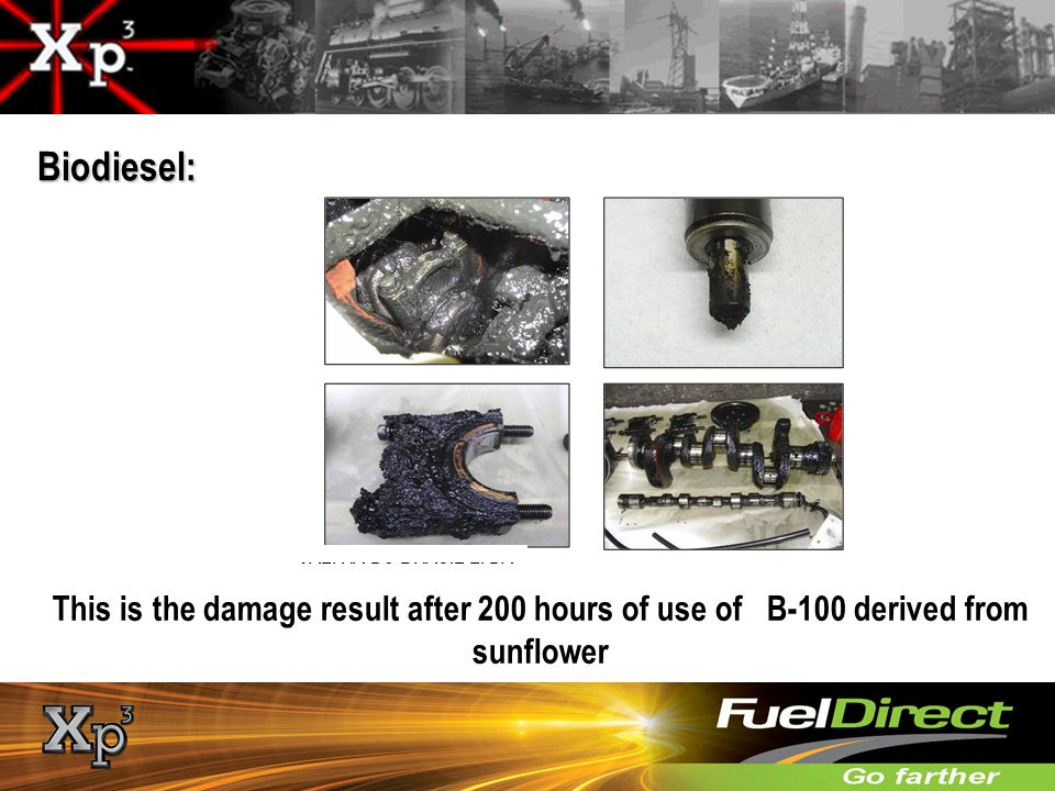 TECHNICAL/MECHANICAL Biodiesel: This is the damage result after 200 hours of use of B-100 derived from sunflower